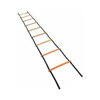 Training Agility Ladders - 6M